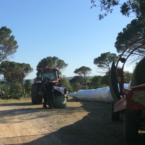 tractor-campo-agroturismo